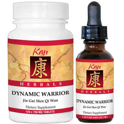 Picture of Dynamic Warrior by Kan