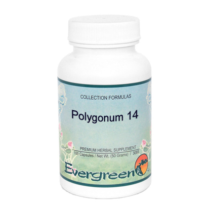 Picture of Polygonum 14 - Evergreen Capsules 100ct