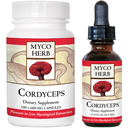 Picture of Cordyceps by Kan