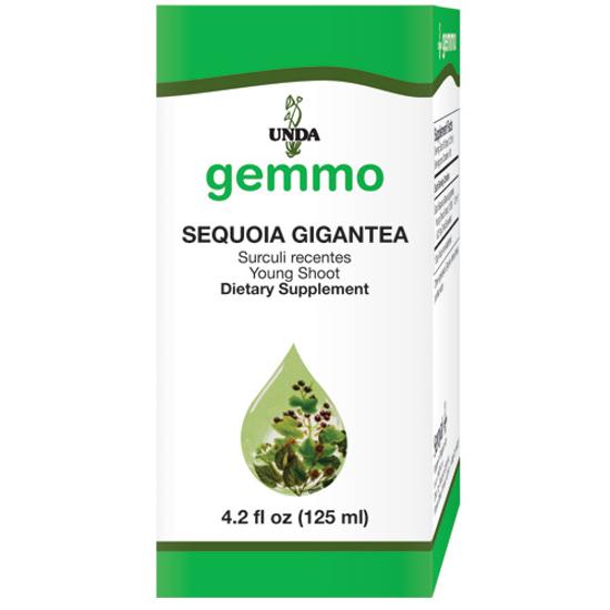 Picture of Sequoia Gigantea 4.2 fl oz, Unda